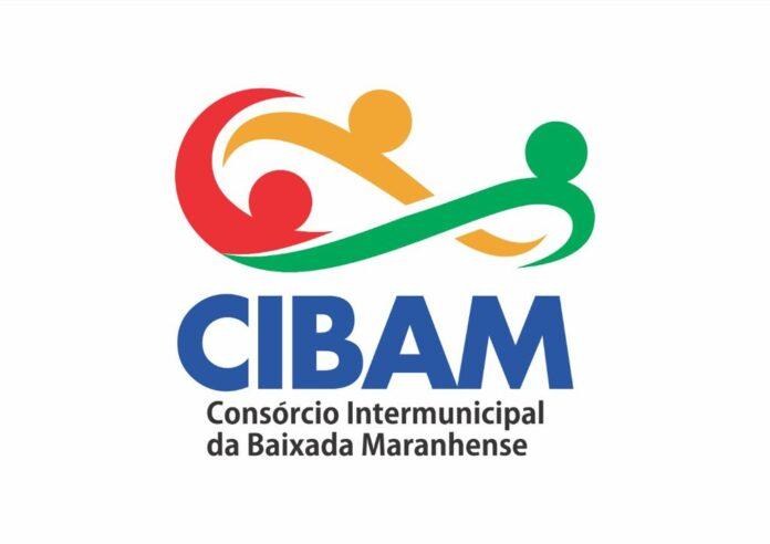 Discussões sobre Consórcio Intermunicipal da Baixada Maranhense avançam e bloco apresenta logo oficial